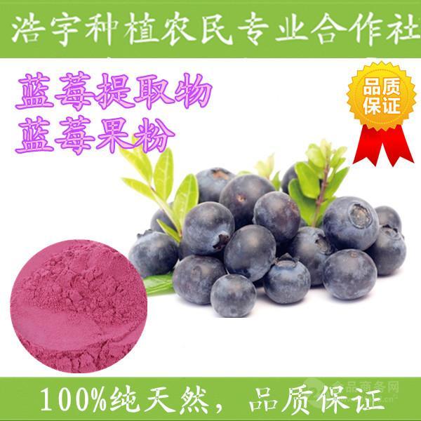蓝莓粉 固体饮料速溶