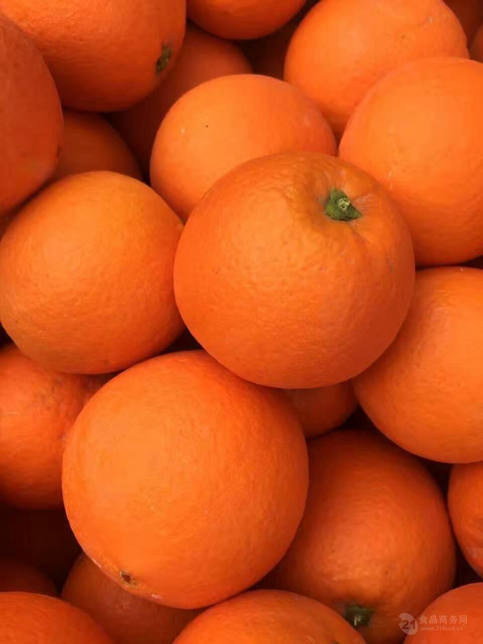 湖北秭归脐橙代办/四季批发秭归脐橙