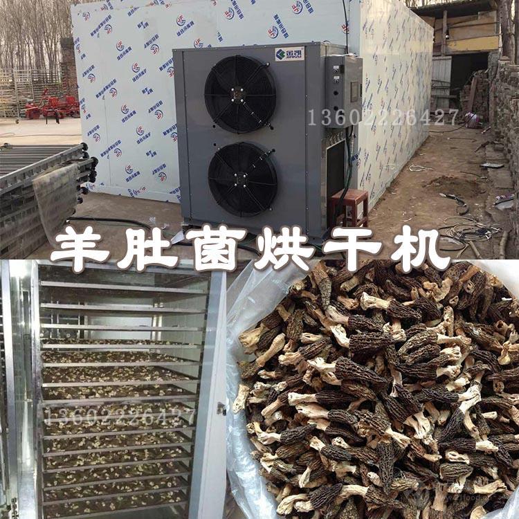 羊肚菌烘干机价格 羊肚菌烘干工艺