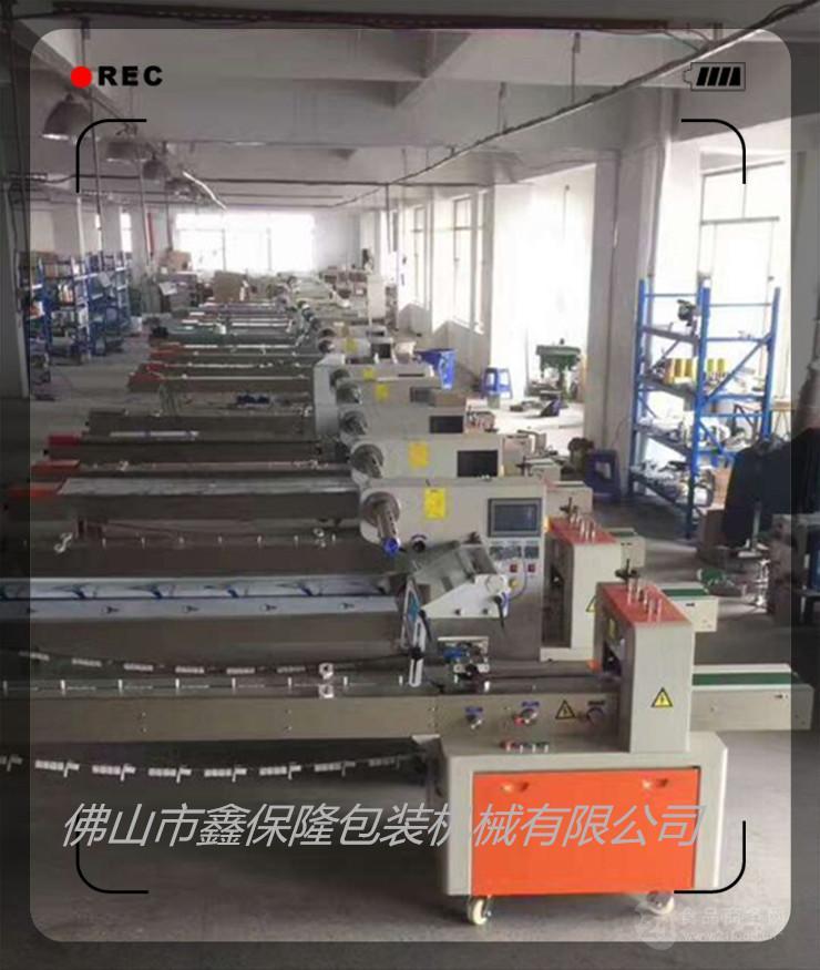 速冻饺子包装机 速冻食品包装机