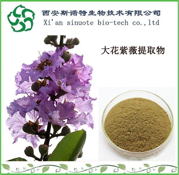 大花紫薇根提取物20:1   斯诺特厂家直供   大花紫薇粉