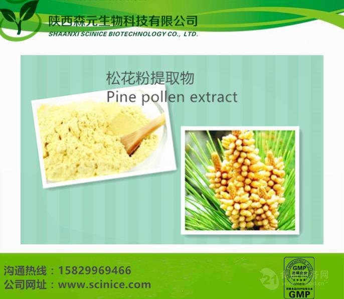 松花粉提取物  优质现货