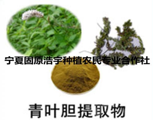 青叶胆提取物 肝炎草提取物 小青鱼胆速溶粉 七疸药粉