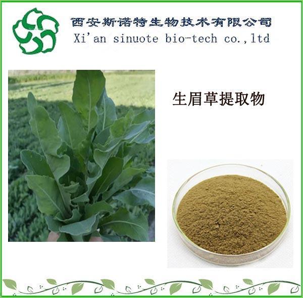 生眉草提取物   斯诺特厂家直供   水溶性  生眉草粉