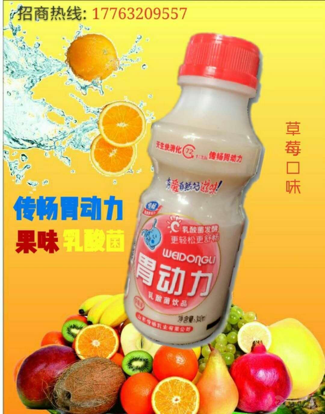 厂家供应传畅胃动力340ml乳酸菌饮品草莓味