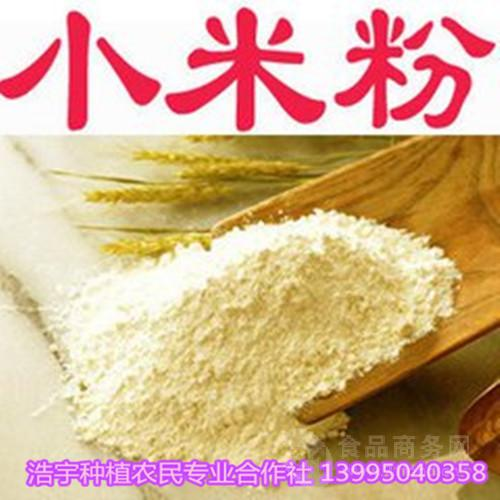 熟小米粉 小米粉  小米 固原浩宇种植
