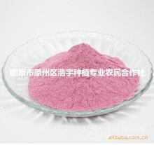 宁夏优质 葡萄粉 葡萄速溶粉98% 葡萄酵素粉 浓缩汁粉 价格现货