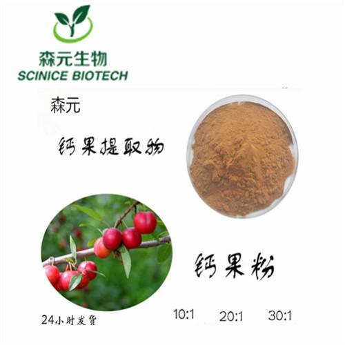 钙果提取物 10:1 钙果粉 全水溶 工厂主推产品 1公斤现货包邮