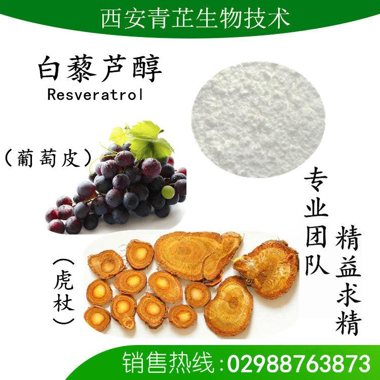 虎杖水提物 白藜芦醇 10-98%