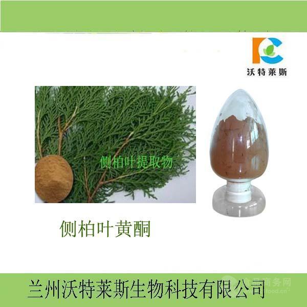 侧柏叶提取物 侧柏叶黄酮10%  1公斤起订 长期供应
