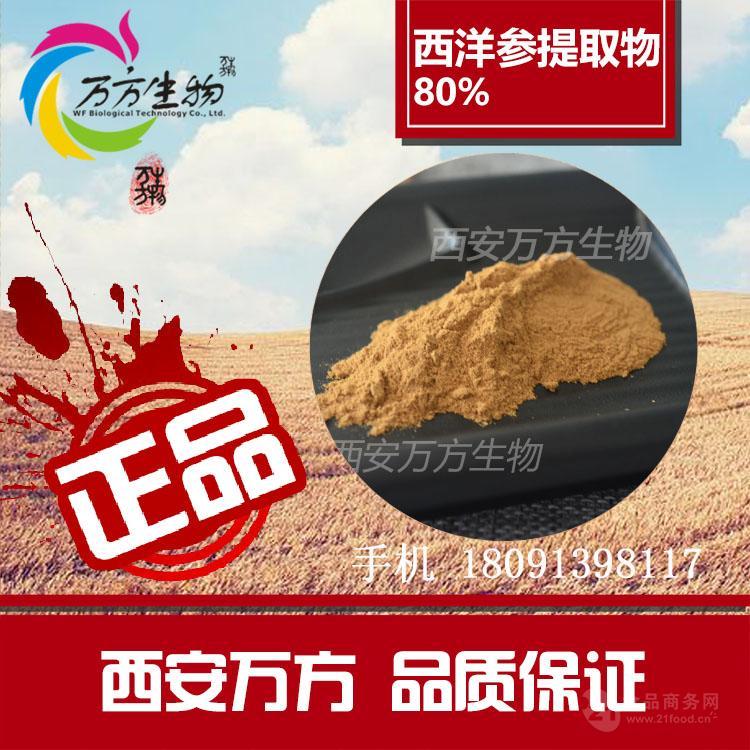 天然西洋参提取物 西洋参皂甙80%  西洋参皂苷粉