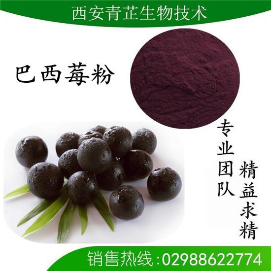 巴西莓果粉/阿萨伊莓粉/阿萨伊果果粉