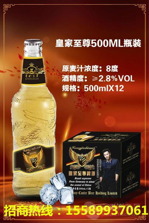 广西地区啤酒厂家春季大瓶啤酒批发