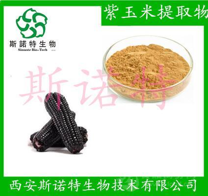 紫玉米提取物 紫玉米粉 紫玉米浸膏粉末 斯诺特厂家