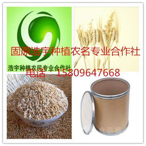 燕麦酵素粉 燕麦仁发酵粉 燕麦全谷物酵素 厂家包邮