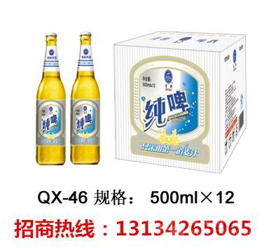 箱装礼盒啤酒代理|春节热卖啤酒批发
