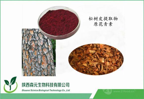 松树皮提取物 原花青素opc95% 高品质原料 工厂现货