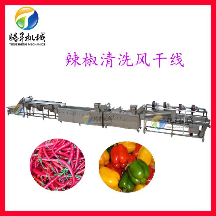 净菜加工设备 全套果蔬加工设备 按要求定制