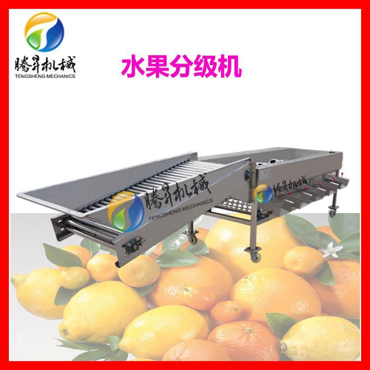 果蔬分选机 土豆/苹果分选机分级机