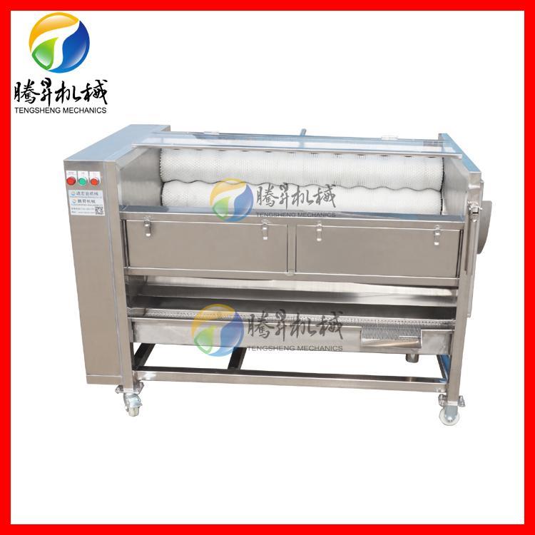 厂家直销果蔬土豆毛刷清洗机 质量保修