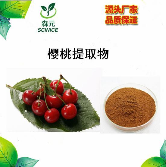 天然樱桃提取物 10:1 厂家直销 现货供应