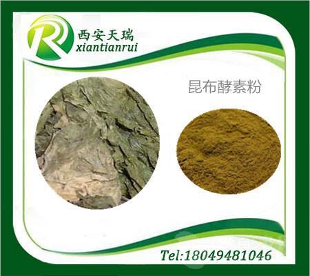 昆布酵素粉原料加工过程控制质量