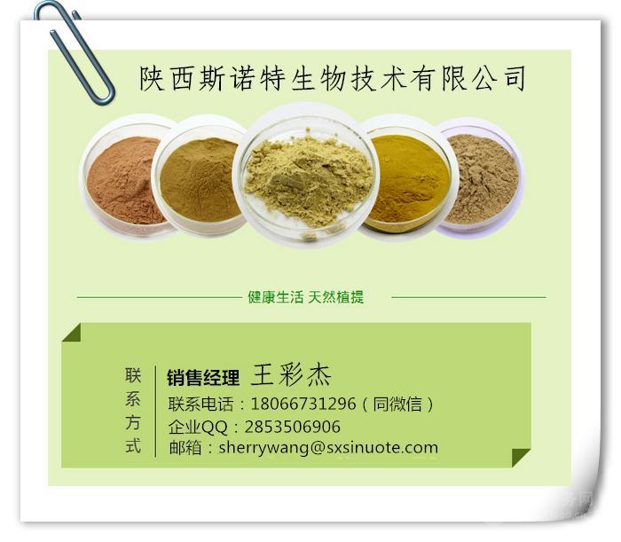 厂家现货供应  苹果多酚 80% UV检测