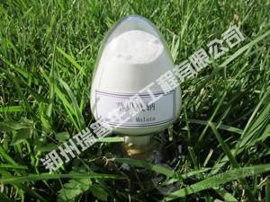 食品级苹果酸钠 原料 国标 价格 - 郑州瑞普