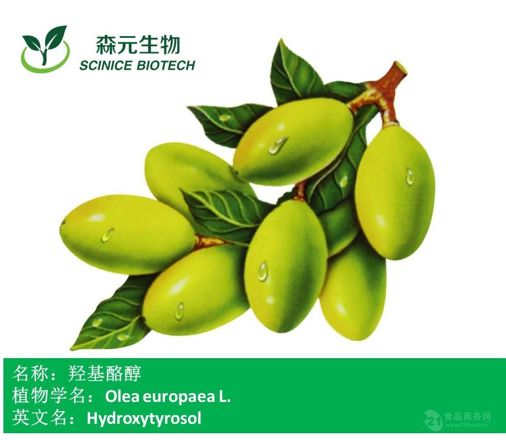羟基酪醇 5% 橄榄叶提取物 优质现货