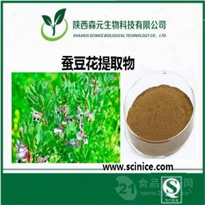 蚕豆花提取物  长期供应