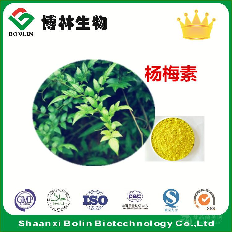 藤茶提取物 杨梅素98(%)杨梅黄酮  现货供应