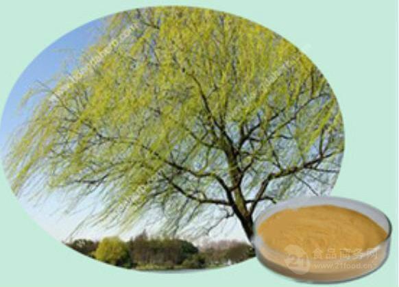 白柳树皮提取物 水杨甙99%  化妆品原料  白柳皮浸膏粉 浓缩粉