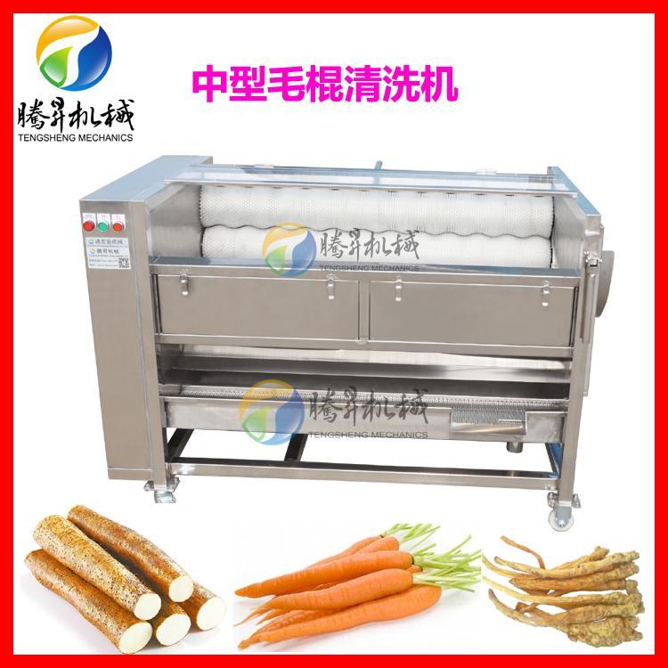 热销TS-M600型瓜果清洗机 中型土豆清洗机 红薯清洗机厂家