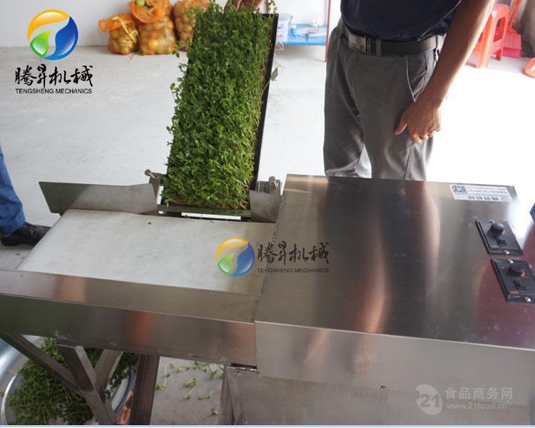 全自动豆芽/豆苗切割机 适合低盘菜
