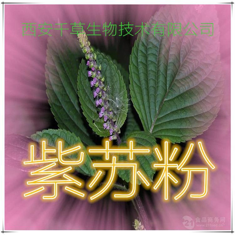 紫苏粉天然原料提取传统工艺厂家直销