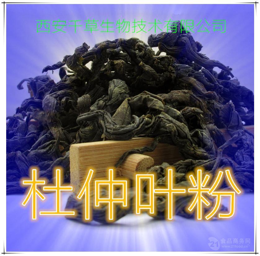杜仲叶浓缩粉全水溶厂家生产