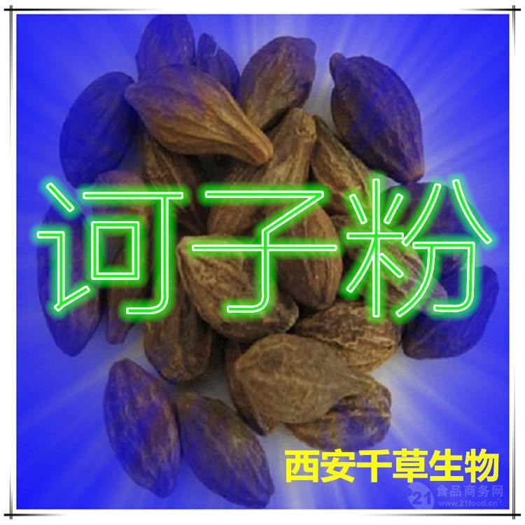 诃子提取物 厂家生产纯天然动植物提取物易溶粉