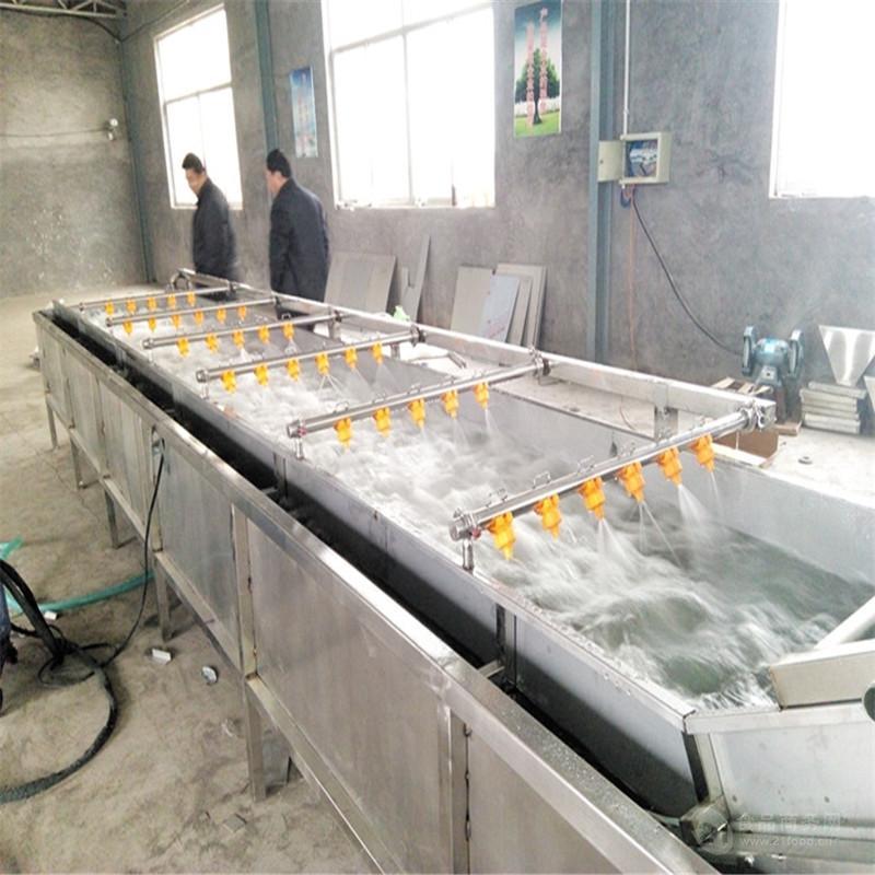 供应多功能气泡清洗机/果蔬气泡清洗机/果蔬清洗流水线
