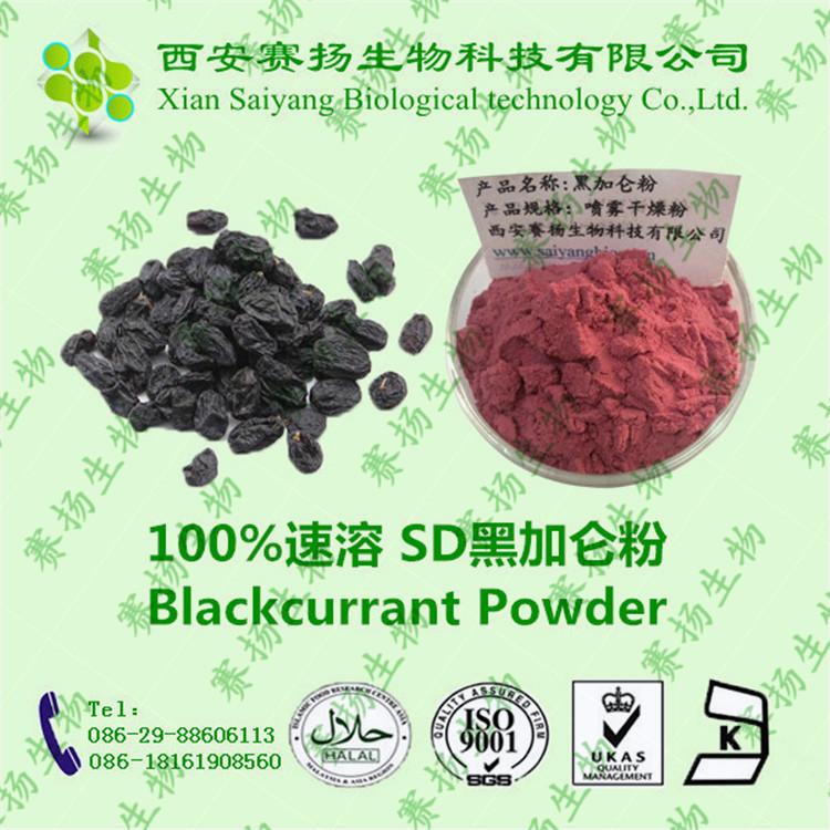 黑加仑粉  降低胆固醇