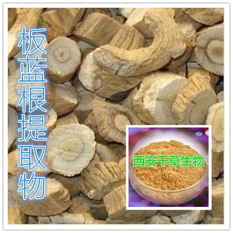 板蓝根粉 厂家生产纯天然动植物提取物 按需定做流浸膏颗粒