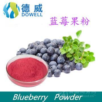 天然藍莓果粉 Blueberry powder 藍莓粉廠家 優質藍莓粉批發