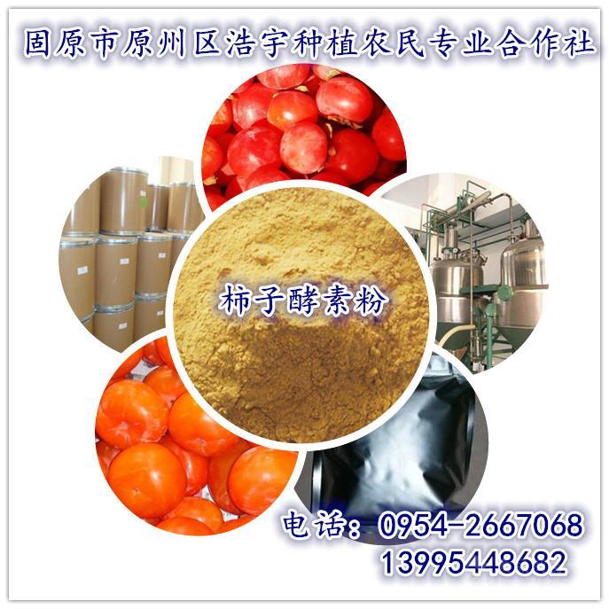 柿子酵素粉  柿子果粉 柿子速溶粉 柿子提取物