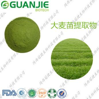 大麦苗提取物10:1/大麦苗粉/淡绿色粉末