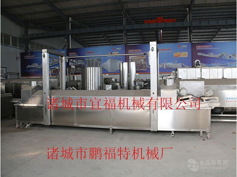 肉丸电加热油炸机专业生产厂