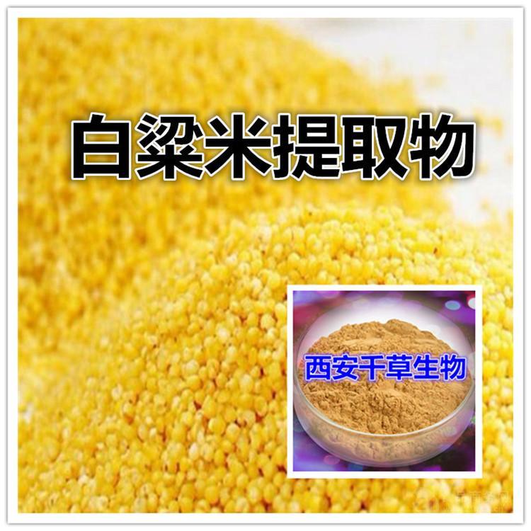 白粱米提取物天然原料厂家直销
