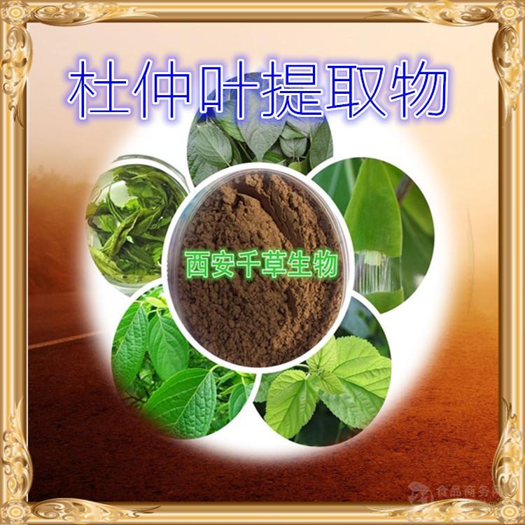 杜仲叶水溶粉纯天然植物提取物厂家生产