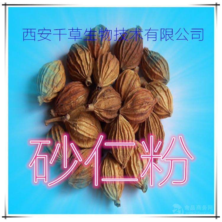 砂仁提取物厂家生产砂仁粉
