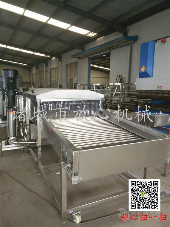 自动化玉米清洗机