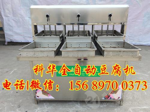 本溪彩色豆腐生产线多样化生产