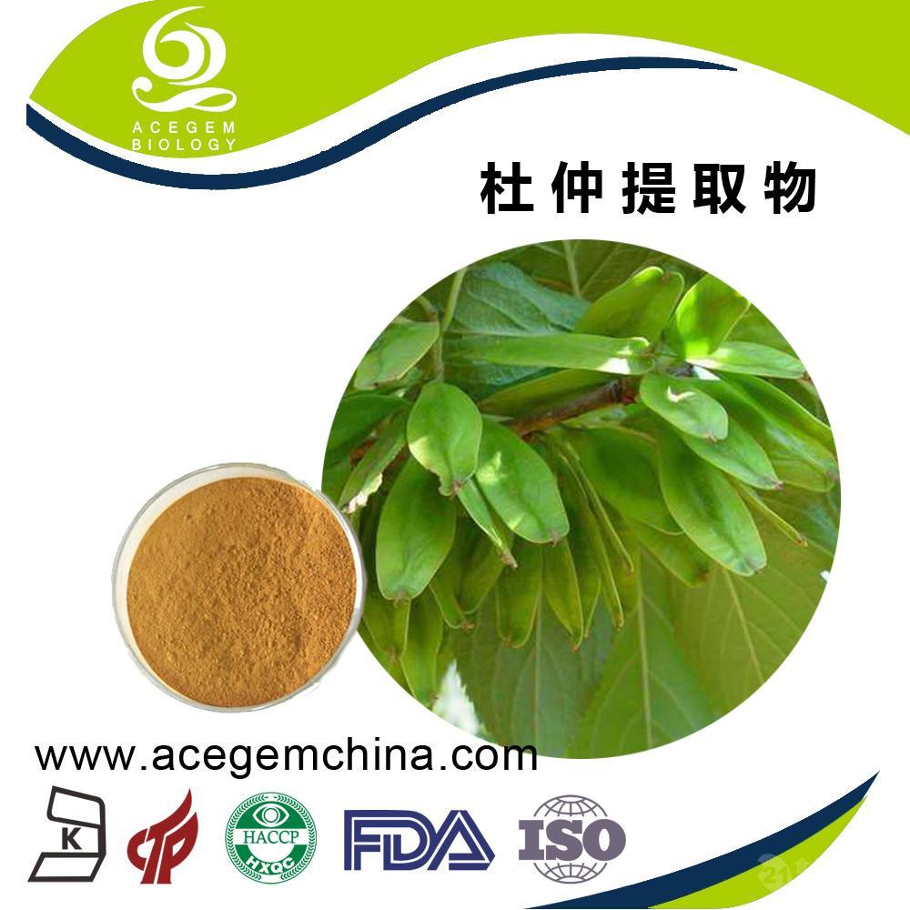 杜仲提取物 绿原酸专业生产厂家